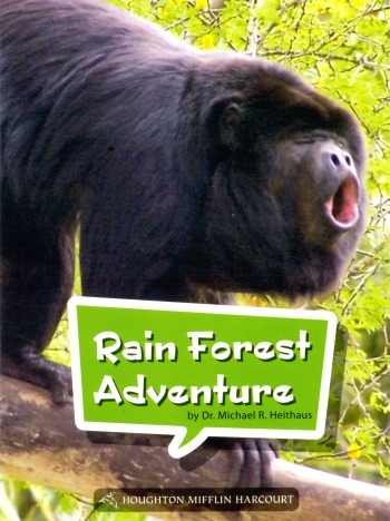 Rainforest-Adventures