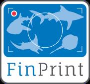 FinPrint Logo (col)