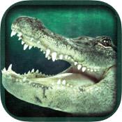 Shark-River-App-2